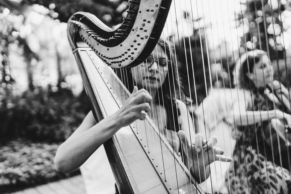 harfa na slubie plenerowym
